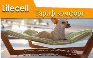 Тариф Лайфселл Комфорт — идеальный выбор для абонентов популярной мобильной сети