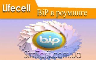 Мессенджер Bip от лайфселл – новый уровень общения